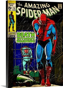 The Amazing Spider-Man (Death Without Warning!)