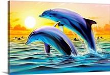 Dolphin Duo II