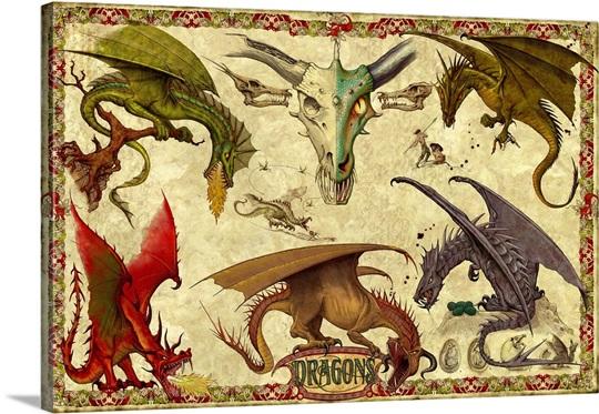 Dragon Study II