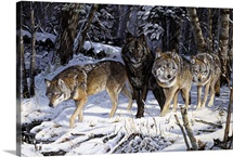 On the Night Trail Wolves
