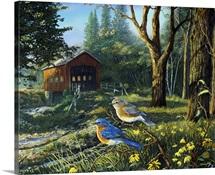 Sleepy Hollow Bluebirds