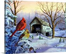 Snowy Haven