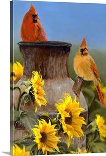 Summer - Cardinals