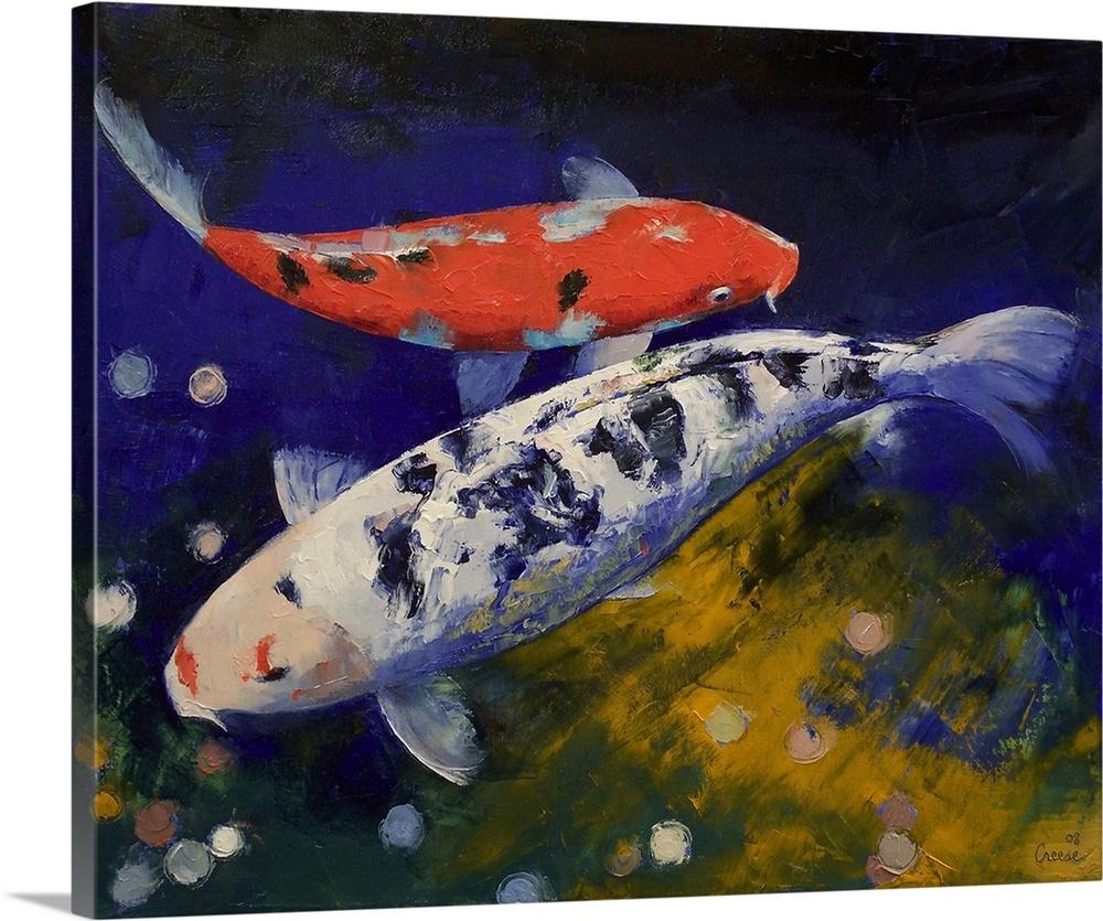 Premium thick wrap canvas wall art entitled bekko koi fish for Koi prints canvas