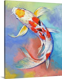 Butterfly Koi Fish