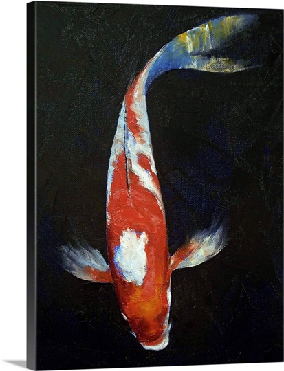 Kohaku koi fish photo canvas print great big canvas for Kohaku koi fish