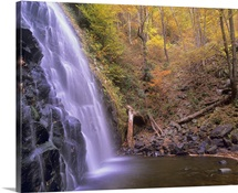 Crabtree Falls cascading into stream in forest, Blue Ridge Parkway, North Carolina