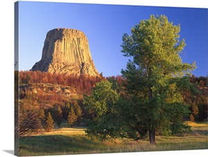 devils tower christian singles More flat earth nonsense - mountains as tree stumps christian single us-democrat devils tower: the above photo is.