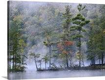 Emerald Lake in fog, Emerald Lake State Park, Vermont