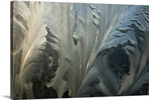 Frost crystal patterns on glass, Ross Sea, Antarctica