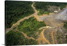 Logging erosion in lowland tropical rainforest, Aird River, Papua New Guinea