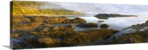 Panorama of Neptune Beach with exposed tide pools at low tide, Oregon