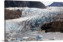 Terminal moraine and glacial lake, Mendenhall Glacier, Juneau, Alaska