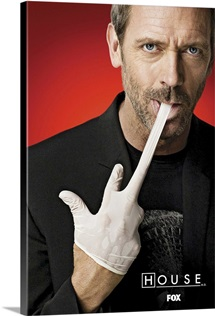 House (TV) (2004)