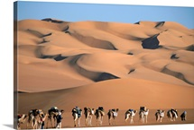 A camel caravan crosses a landscape of sculpted sand dunes