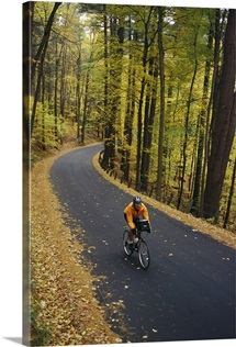 A cyclist rides along a rural road in the fall