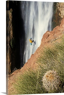 A man rappelling down Deer Creek falls