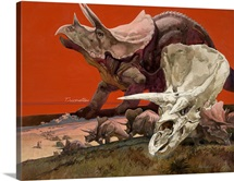 A painting depicts a Triceratops and its skull.