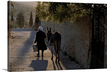 A woman and her donkey walk down a street in Pyrgi, Greece