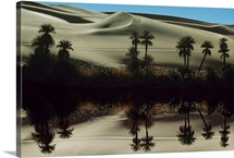 An oasis lake in the desert, Takartibah, Libya