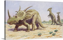 Both the styracosaurus (right) and the parasaurolohus were herbivores.