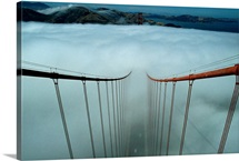 Cables of the Golden Gate Bridge stand above the early morning fog in San Francisco