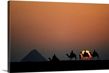 Camelback riders against the setting sun on the Giza Plate, Egypt