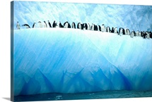 Chinstrap penguins lined up along a blue iceberg