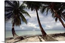 Cruise ship off west coast of Tobago, Caribbean