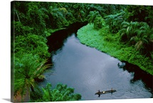 Elevated view of a canoe crossing a river in a dense rain forest