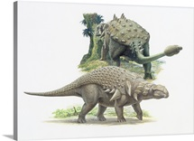 Euoplocephalus and Edmontonia from the late Cretaceous period.