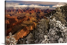Fresh snow at the South Rim, Grand Canyon National Park, Arizona