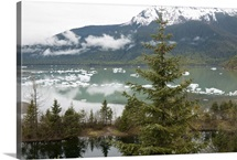 Ice floes near Mendenhall Glacier in Juneau, Alaska