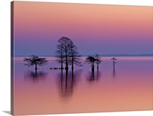 Lake Mattamuskeet, Mattamuskeet National Wildlife Refuge, Swanquarter, North Carolina