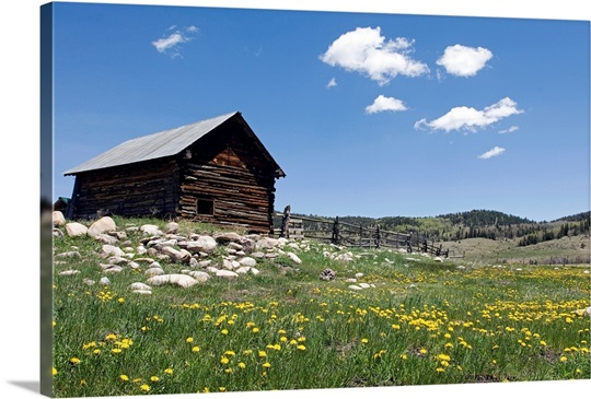 Log cabin on the High Country Ranch on the Continental Divide, New Mexico