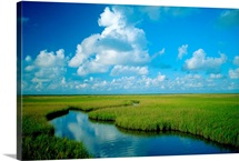 Marsh canal, Oyster Bayou, Atchafalaya Delta, Atchafalaya National Wildlife Ref uge