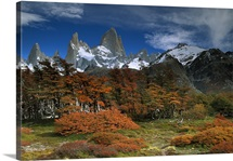 Mount Fitzroy and Lenga Beech trees, Los Glaciares National Park, Argentina