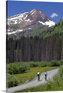 Mountain bikers riding on a county road towards a forest and mountain