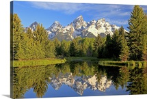 Reflections of the Teton range in Schwabacher Landing