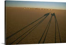 Shadows of two camels appear to dwarf the rest of the Sahara caravan