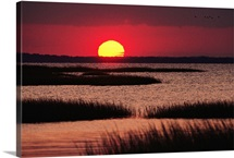 Sunset over a Chincoteague Island marsh, Virginia