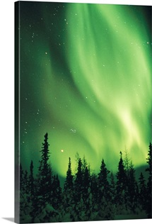 The Aurora Borealis shimmers in the sky, Canada