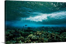 Underwater view of a wave breaking over a reef, The Red Sea