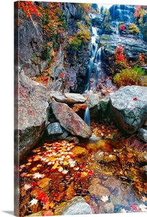 Low Angle View of a  Waterfall with Colorful Fall Leaves, Silver