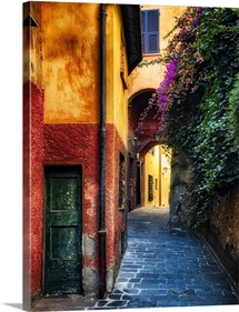 Portofino Alley