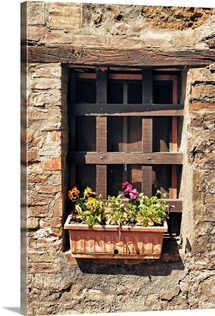Small Window with Flowers