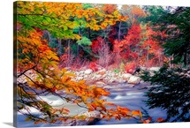 Swift River Autumn Scenic, White Mountains National Forest, New