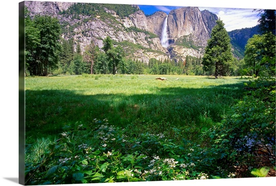 View of the Yosemite Valley and Falls, California 