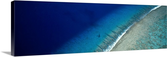 Aerial View of Beach, Teti&#39;aroa Island, Polynesia