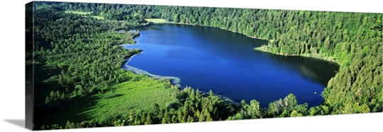 Aerial view of trees around a lake, Bonlieu Lake, Jura, France
